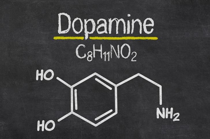 https://truffeltherapie.nl/wp-content/uploads/2020/01/dopamine.jpg